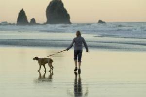 canon-beach-walk_2945068